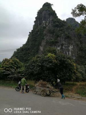 Vietnam16